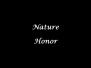 Spring Salon 2018 Nature